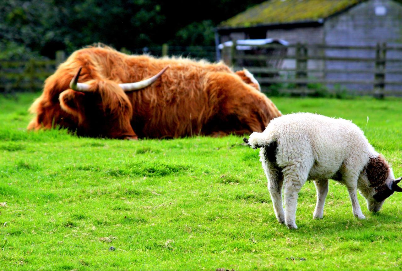 potovanje-severna-škotska-in-irska-01